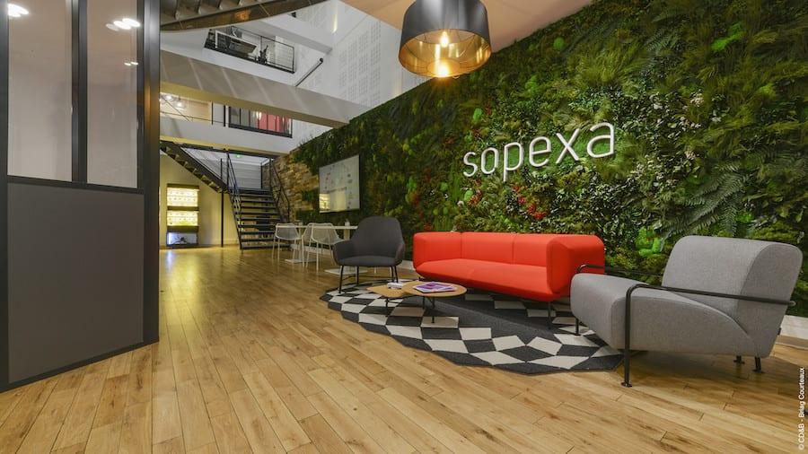 Consorzio Pecorino Romano affida i nuovi spot a Sopexa